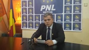 Gheorghe Roman PNL